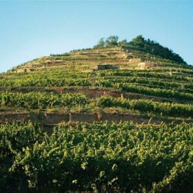Grand Cru Kitterle Schlumberger Alsace